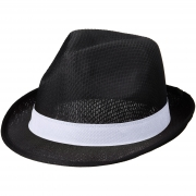 Ensemble Trilby