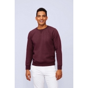 SWEAT-SHIRT HOMME COL ROND